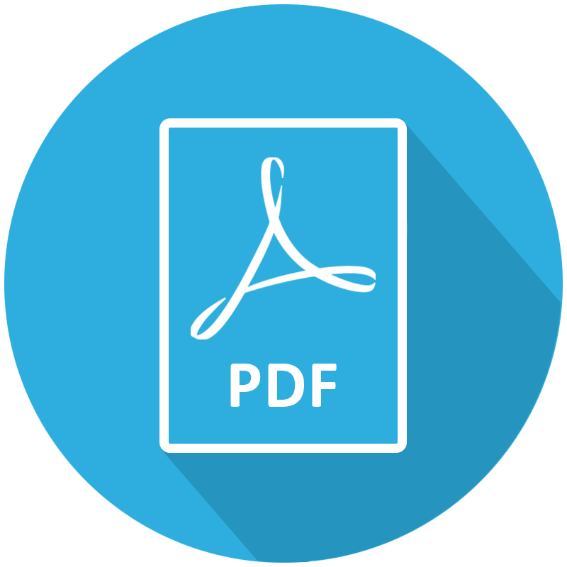 ReachMee_PDF_Icon.png